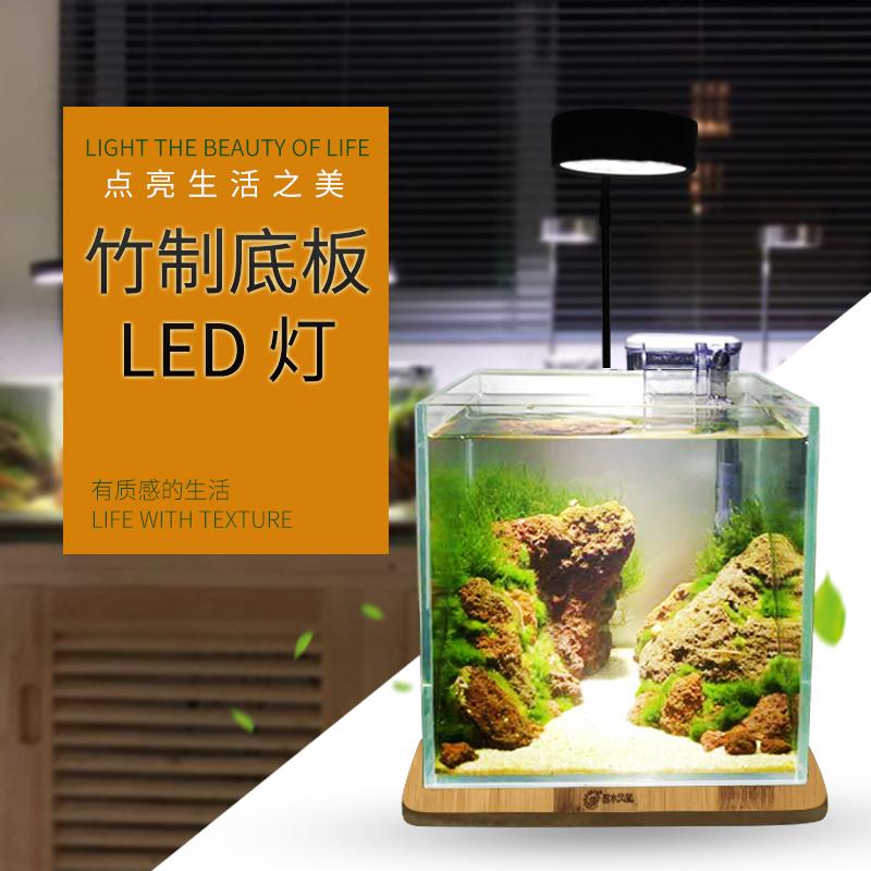 碧水风和迷你生态植物水陆雨林爬虫照明灯(BSFH-TH3W)